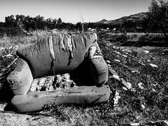 Abandoned Couch (La Chachalaca Fotografía) Tags: abandoned abandonado lost perdido perdu couch sofa homeless poverty lumix gm5