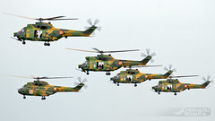 IAR-330L Puma SOCAT 79 + 56 + 86 + 64 + MEDEVAC 67 RoAF   Baza 95 Aeriană Bacău Open Day 2017 (Horatiu Goanta Aviation Photography) Tags: iar iar330 sa330 sa330l sa330puma sa330lpuma industriaaeronauticaromana industriaaeronauticăromână iarbrasov iarbrașov aerospatiale sudaviation aerospatialepuma sudaviationpuma aerospatialesa330puma sudaviationsa330puma elicopter helicopter hubschrauber chopper heli helo transporthelicopter transporthubschrauber turboshaft turbineengine turbomecaturmo turbomecaturmoiv coldwaraircraft coldwarhelicopter iar330l iar330puma iar330lpuma iar330lpumasocat iar330socat gunship helicoptergunship assaulthelicopter attackhelicopter antitankhelicopter socat sistemoptronicdecercetaresiluptaantitanc iar99 iar99soim roaf romanianairforce forteleaerieneromane forțeleaerieneromâne airforce militaryaviation nato aerospace airplane aeroplane plane aviation aircraft flight wings antitank bacau bacău baza95aeriană baza95aerianăeroucâpitanaviatoralexandrușerbănescu baza95aeriana 95airbase lrbc17 bacauairport lrbc bcm bcmlrbc airshow horatiugoanta