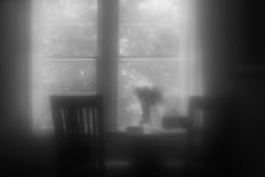 Interior, Summer Afternoon (Sean Anderson Media) Tags: interior summer window chairs sunlight flowerarrangement stilllife sonya7rii diylens homemadelens magnifyingglass magnifyingglasslens lofi lofilens blackandwhite monochrome softfocus singleelementlens monoclelens glow