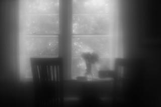 Interior, Summer Afternoon