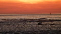 EL PESCADOR AL ATARDECER (CARLOS CALAMAR) Tags: cadiz andalucia atardecer barca pesca fishing sunset sea ocean fisher fisherman ba hrefhttpswwwflickrcomgroupscomunidadflickrspainpoolcomunidad flickr españolaa b