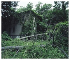 Consumed by nature (Boris_Baden0v) Tags: explore abandoned statehospital