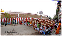 7012 - Sri Parthasarathy Temple Narasimhar Car Festival series 01 (chandrasekaran a 40 lakhs views Thanks to all) Tags: traditions heritage culture tamils temple chennai triplicane tamil nadu india vaishnavites lord vishnu krishna parthasarathy alwars festival car travel brahmotsavam canoneos760d samyang8mm