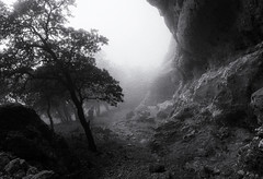Into the Unknown (nokkie1) Tags: mallorca spain forrest fog woman trail path rockface mystery contrast black white
