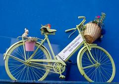 DSCN9427 (EadaoinFlynn) Tags: bicycle arklow ireland