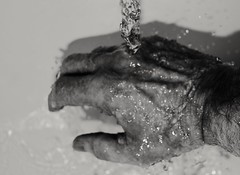 My right hand (Jon Hughes2) Tags: flickerfriday myrighthand nikond3100 nikkor1855mm