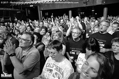 2017 Bosuil-Het publiek bij Hoodoo Monks en The Red Devils 7-ZW