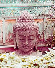 Buddah Head - Copy (Savonie 45) Tags: color photography fine art buddah architecture