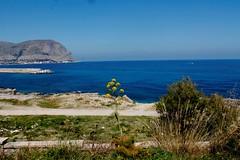 Bluesea -  Addaura - Palermo (dona(bluesea)) Tags: sea coast blu blue addaura palermo sicilia sicily