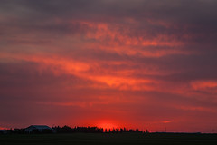 Fire in the sky (ingridvg) Tags: fire sky fiery red sunset horizon clouds alberta canada