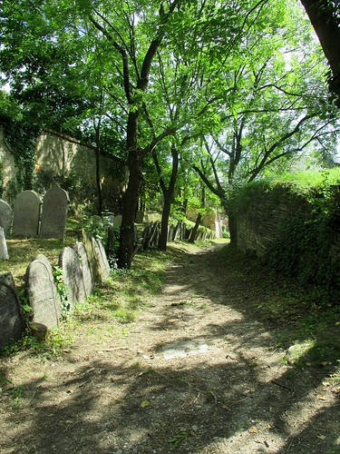 Cesta v židovském hřbitově