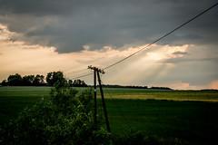 DSC_0099-12Białowie (mrpaymey) Tags: polska landscape białowieża podlasie