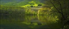 Reflejos (antoniocamero21) Tags: pantano verde color foto sony reflejos agua hayas árboles paisaje miontseny barcelona catalunya