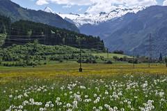 IMGP7080-0-Austria-2017-Zell-am-See (marohhoram) Tags: 2017 ereignis europa kaprun kitzsteinhorn salzburg urlaub österreich