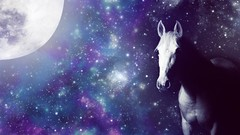 Moonlit Horse (Larah McElroy) Tags: picture pictures larah mcelroy larahmcelroy moon moonlight stars galaxy sky horse horses equine equines light