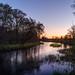 pine river islands