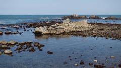 rocky coast (kasa51) Tags: coast beach rock sea ocean sandstone mudstone cretaceous andesite neogeneperiod nagasakibana choshi japan 白亜紀の砂岩・泥岩 新第三紀の安山岩 長崎鼻 海岸 horizon