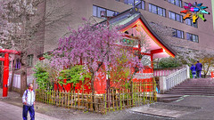 Tokyo=523 (tiokliaw) Tags: anawesomeshot burtalshot colours discovery explore flickraward greatshot highquality inyoureyes joyride outdoor perspective recreation supershot teamworks world