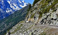 Accrochée à la montagne (Diegojack) Tags: finhaut valais suisse train panoramique montagne abrupte emosson verticalp