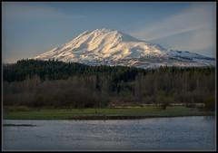 Washington's Most Lovely (Ernie Misner) Tags: f8andwashingtonsmostwanted mountadams troutlake washington hoyahd3polarizer erniemisner lightroom nik capturenx2 cnx2 mountain