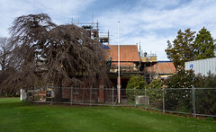 Lots of Work to Do Yet (Jocey K) Tags: southisland newzealand nikond750 christchurch monavale scaffolding earthquakerepairwork architecture buildings trees gardens sky