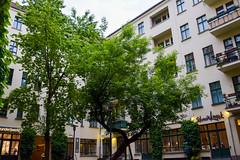 DSC_9857-49 (kytetiger) Tags: berlin scheunenviertel rosenthaler str