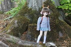 Excursion!!! :-) (Ninotpetrificat) Tags: doll dd dollfiedream dollfie ddh10 dollclothes mdd muñeca hobby handmade hechoamano denim plisado japantoy japandoll toys asiandoll fashion puppe