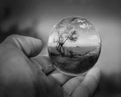 10 - Cuida el mundo, está en tus manos - Sergio Saavedra