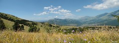 Incomparable nature (kali_merette2002) Tags: norcia italie italy italia pérouse ombrie montagne mountain flower wild sauvage nature violet flowers ciel sky