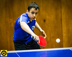 BATTS1706JSSb -397-2-116 (Sprocket Photography) Tags: batts normanboothcentre oldharlow harlow essex tabletennis sports juniors etta youthsports pingpong tournament bat ball jackpetcheyfoundation