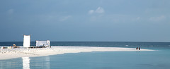 sea life (photoksenia) Tags: ocean couple blue sand maldives