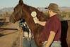 07VS0008_100 (APHIS.gov) Tags: horses animalidentification