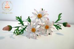 Shugar daisy (Albena Bojidarova) Tags: daisy shugar flowers gumpaste cake