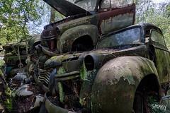 SP-4 (StussyExplores) Tags: austria scrapyard vintage cars teeth rust decay abandoned left behind vehicles explore exploration urebx