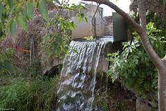 08072017-_POU8035 (Salva Pou Fotos) Tags: 2017 ajuntament fradera grupsenderista observatorifauna pont aiguamolls barberàdelvallès caminada pou