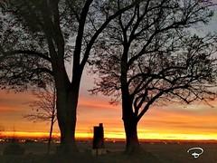 SUNSET IN DECEMBER #sunset #Sonnenuntergang #Schweinfurt #Landschaft #landscape #Photographie #photography (benicturesblackwhite) Tags: landscape sonnenuntergang photography landschaft sunset schweinfurt photographie