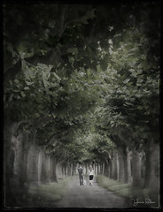 walk the dog . . . (YvonneRaulston) Tags: texture europe rudesheim germany atmospheric sony fineartgrunge creativeartphotography green moody people peaceful trees photoshopartistry challengeassignmentweek1