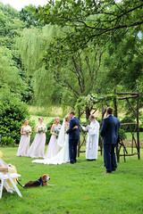 Emily and Erik 35 (joyagarris) Tags: wedding kiss firstkiss outdoorwedding ceremony dog