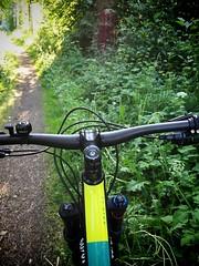 Going to Forest 2 (pjen) Tags: nordic freedom boreal maastopyörä pike 275 650b kashima trail bicycle bike 2x11 outdoor vehicle 5010 5010cc 50to01 summer santacruz mtb finland nature forest carbon fullsuspension hiilikuitu