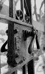 The Secret Garden (Mrs Judge) Tags: secretgarden ladydixonpark belfast gate garden entrance outdoors