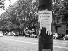 URBANA 21-HR_18_LR (Domenico Cichetti) Tags: analogicait milano bw analogico monocrome rodinal film 35mm selfdevelop argentique pellicola blackandwhite blackwhite