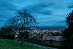 Entre el ocaso y la noche. (ccc.39) Tags: asturias oviedo noche nocturna ocaso nubes nublado ciudad luces farolas árbol casas naranco