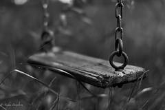 Midsommer in Sweden (lortopalt) Tags: abandoned övergiven gunga swing