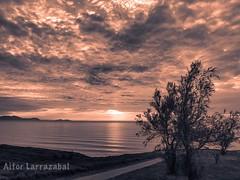 Sunset (larrait66) Tags: tree arbol oceano ocean water agua sea mar costa beach playa clouds sky nubes cielo sunset ocaso atardecer