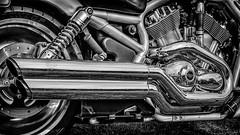 Harley Davidson Vance & Hines Exhausts (Pieter de Knijff) Tags: harley davidson exhaust pipe vance hines motorcycle motor bike blackandwhite bw monochrome holland netherlands dutch