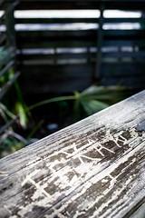 TEXAS (abbey j) Tags: fortislandtrailpark citruscounty crystalriver florida wood railing grain naturecoast gulf coast texas carving carve graffiti grey gray