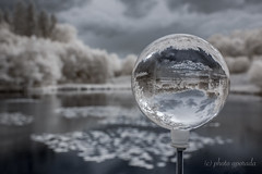 """Frozen"" Infrared Crystal Ball (gporada) Tags: crystalball kristallkugel d40 infrared frozen pond teich see wasser water woodeffect"