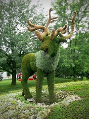 Canada 150 with the Hartley sisters (Gillian Walker) Tags: canada 150 day 2017 mosai mosaicanada150 gatineau