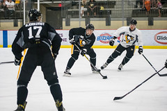 "Pens_Devolpment_Camp_7-1-17-31 • <a style=""font-size:0.8em;"" href=""http://www.flickr.com/photos/134016632@N02/35664082115/"" target=""_blank"">View on Flickr</a>"