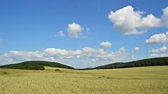 Landschaft auf der Windleite (Tobi NDH) Tags: landscape landschaft windleite nordthüringen thüringen thuringia deutschland germany countryside feld field natur nature sky clouds sommer summer 2017